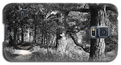 Parkland Trail Galaxy S5 Case