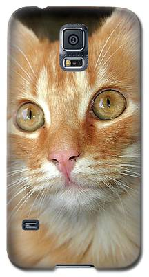 Portrait Of A Cat Galaxy S5 Case