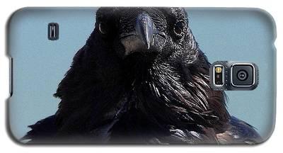 Portrait Of A Raven Galaxy S5 Case