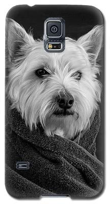 Prairie Dog Galaxy S5 Cases