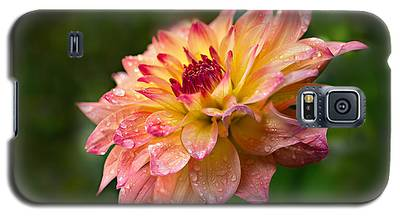 Rainy Dahlia Galaxy S5 Case