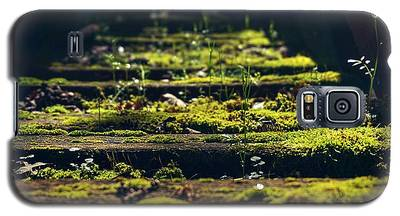 Reclaimed By Nature Galaxy S5 Case