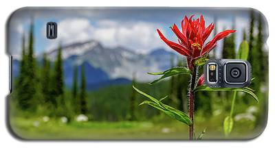 Red Paintbrush On Mount Revelstoke Galaxy S5 Case
