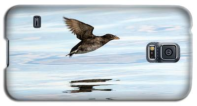 Auklets Galaxy S5 Cases