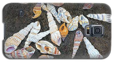 Shells From The Sea Of Galilee Galaxy S5 Case