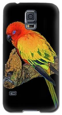 Sleepy Sun Conure Galaxy S5 Case