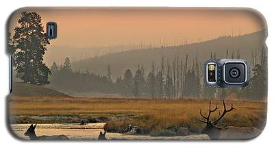 Smokey Elk Crossing Galaxy S5 Case