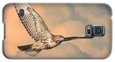 Soaring Hawk Galaxy S5 Case