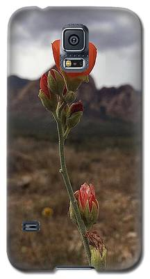 Sorbet Galaxy S5 Case