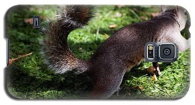 Squirrel Running Galaxy S5 Case