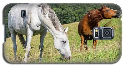 Summer Evening For Horses Galaxy S5 Case