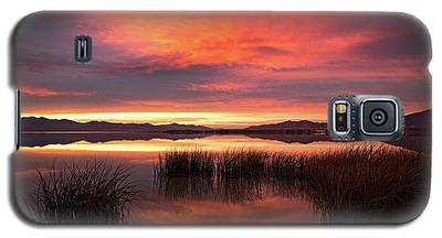 Sunset Reeds On Utah Lake Galaxy S5 Case