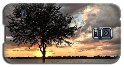 Sunset Tree Galaxy S5 Case