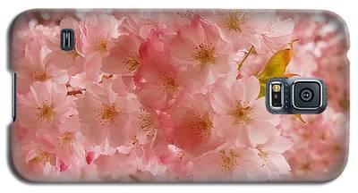 Sweet Pink- Holmdel Park Galaxy S5 Case