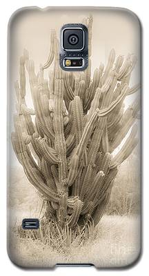 Tall Cactus In Sepia Galaxy S5 Case
