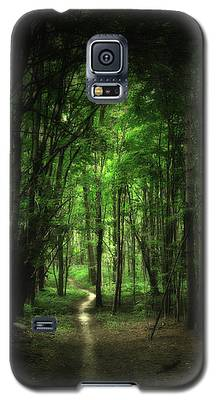 The Cathedral Arch Galaxy S5 Case
