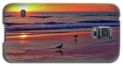 Three Seagulls On A Sunset Beach Galaxy S5 Case