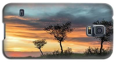 Three Trees On A Hill Galaxy S5 Case