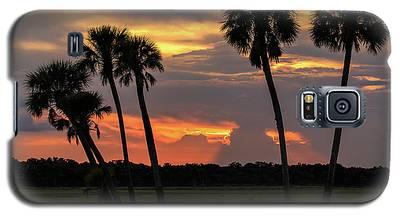 Wetlands Sunset Galaxy S5 Case
