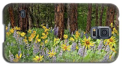 Balsamroot And Lupine In A Ponderosa Pine Forest Galaxy S5 Case