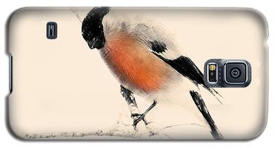 Winter Bullfinch Galaxy S5 Case