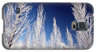 Winter Landscape Galaxy S5 Case