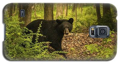 Yearling Black Bear Galaxy S5 Case