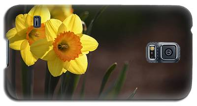 Yellow Spring Daffodils Galaxy S5 Case