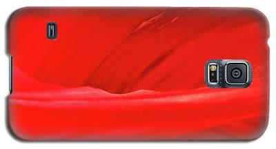 A Single Tulip Petal Galaxy S5 Case