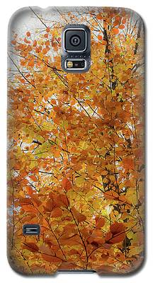 Autumn Explosion 1 Galaxy S5 Case