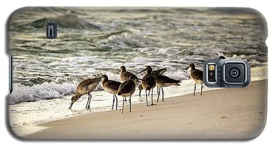 Birds On The Beach Galaxy S5 Case