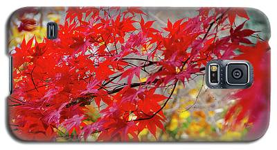 Brilliant Fall Color Galaxy S5 Case
