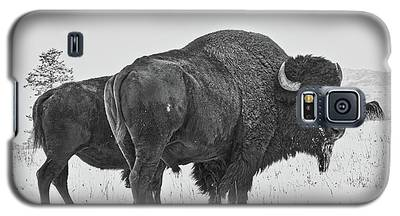 Buffalo In The Snow Galaxy S5 Case