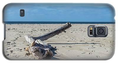 California Driftwood Galaxy S5 Case