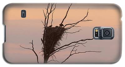 Eagle Family Galaxy S5 Case