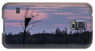 Eagle Sunset Galaxy S5 Case