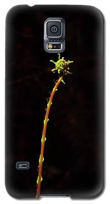 Fiddlefern Superstar Galaxy S5 Case