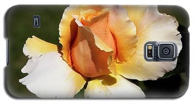 Fragrant Rose Galaxy S5 Case