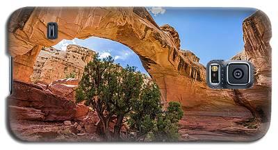 Hickman Natural Bridge Galaxy S5 Case