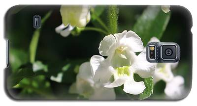 Lily Of The Valley, Cape May Galaxy S5 Case