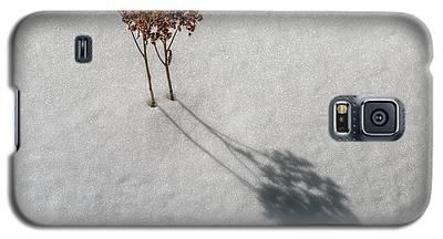 Long Shadow Of Winter Galaxy S5 Case