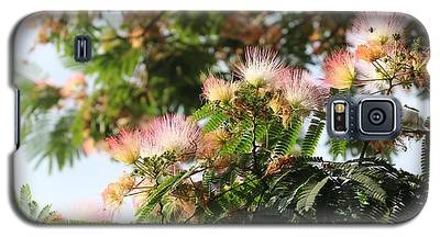Mimosa Tree Flowers Galaxy S5 Case