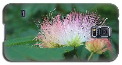 Mimosa Tree In Bloom Galaxy S5 Case