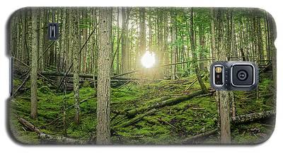 Monashee Forest Sunset Galaxy S5 Case