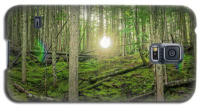 Monashee Forest Sunset With Flare Galaxy S5 Case