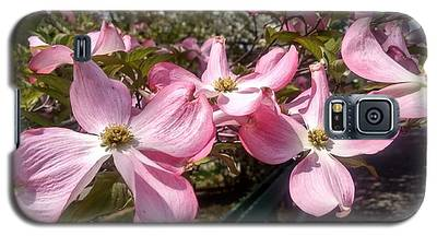 Pink Dogwood Blooms Galaxy S5 Case