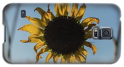 Summer Afternoon Galaxy S5 Case