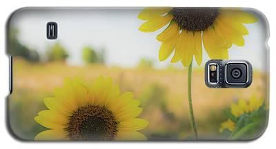 Summer Softness Galaxy S5 Case