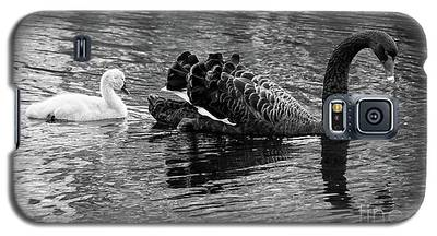 Swan And Signet Galaxy S5 Case
