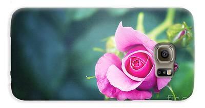 Raspberry Galaxy S6 Cases